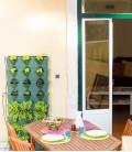 Minigarden Vertical Kitchen Garden
