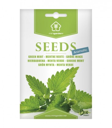 Grüne Minze, Samen von Minigarden