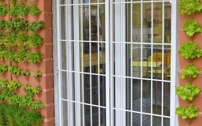 Der vertikale Minigarden-Gemüsegarten der Academia dos Sabores von Vaqueiro