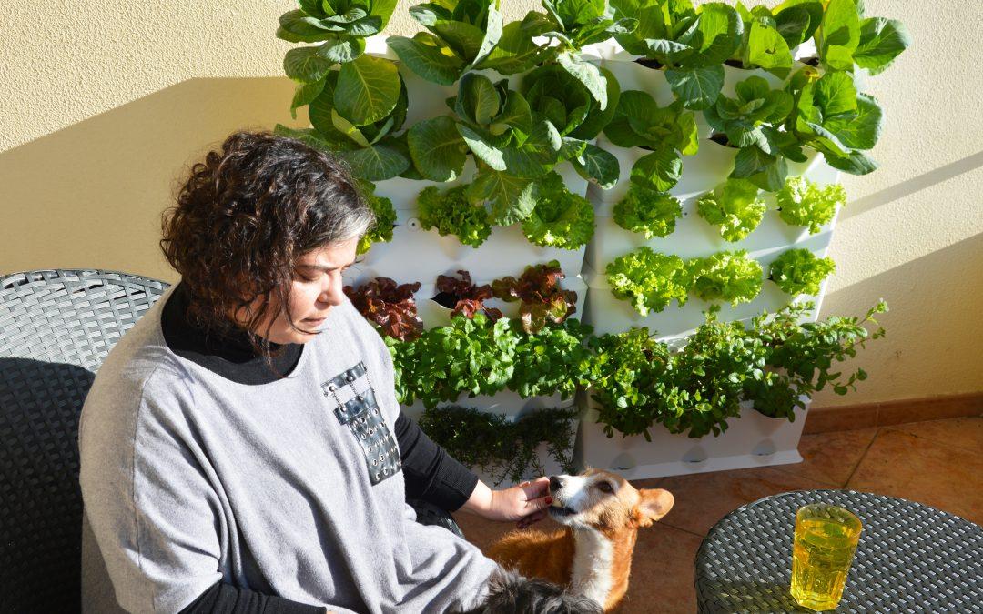 Im Gemüsegarten mit… Joana Lobato